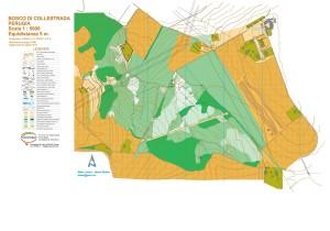 8 agosto 2015 Mappa per orienteering al Bosco di Collestrada (PG)